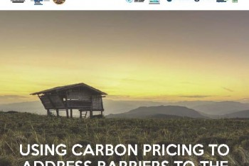 Carbon pricing and the way forward